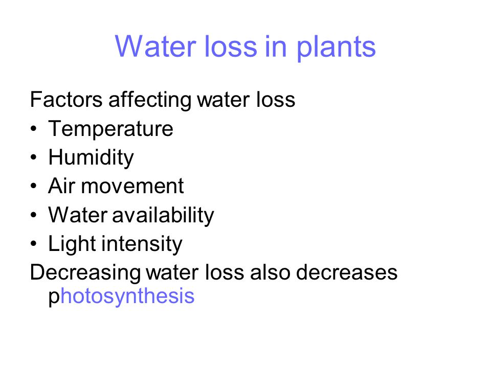 Water loss in plants Factors affecting water loss Temperature Humidity