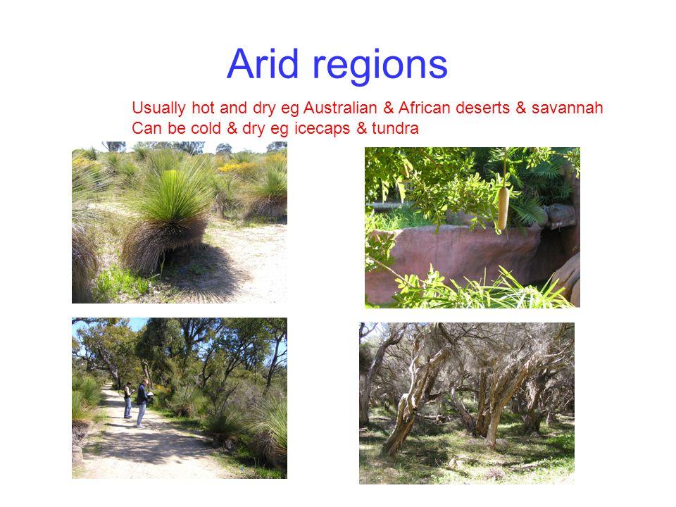 Arid regions Usually hot and dry eg Australian & African deserts & savannah.