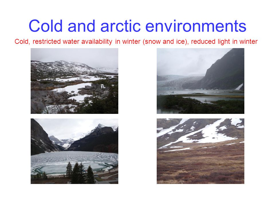 Cold and arctic environments