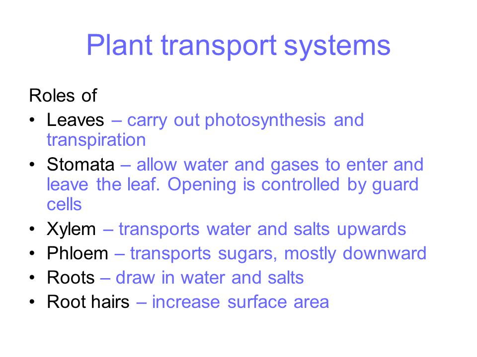 Plant transport systems