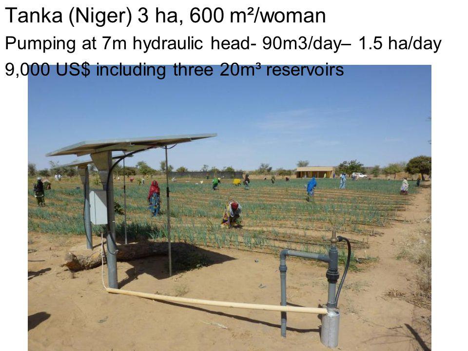 Tanka (Niger) 3 ha, 600 m²/woman