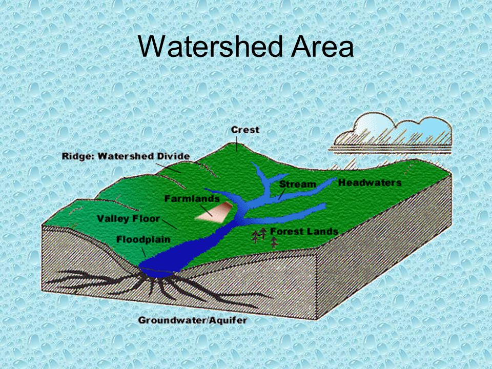 Watershed Area