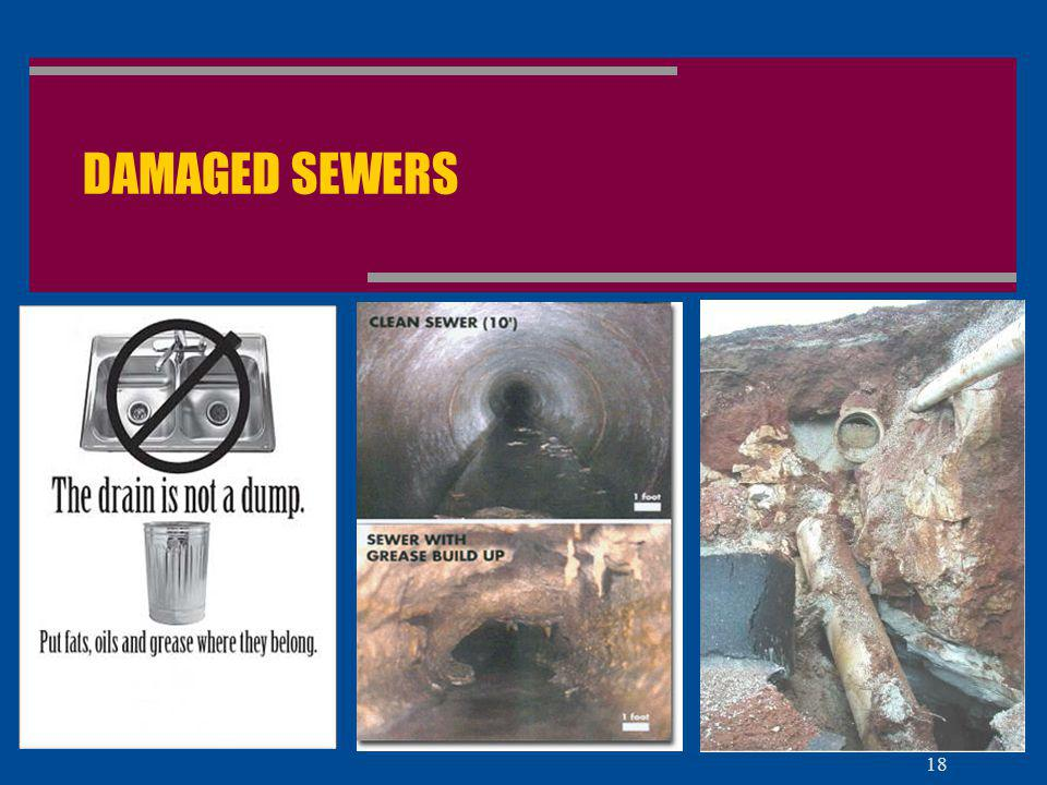 DAMAGED SEWERS