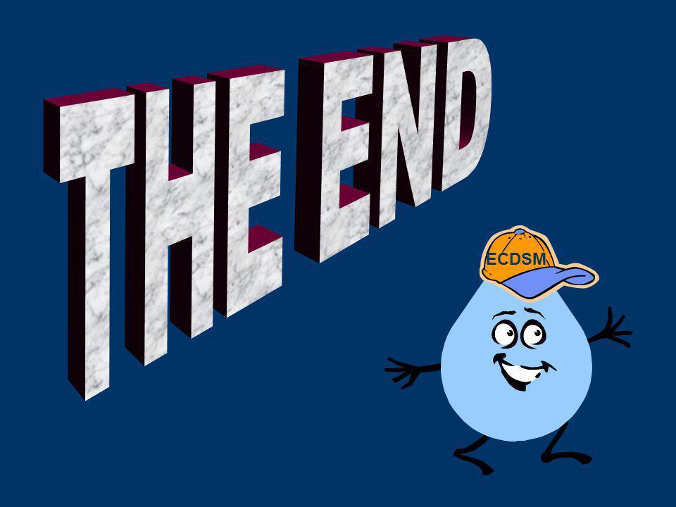 THE END ECDSM