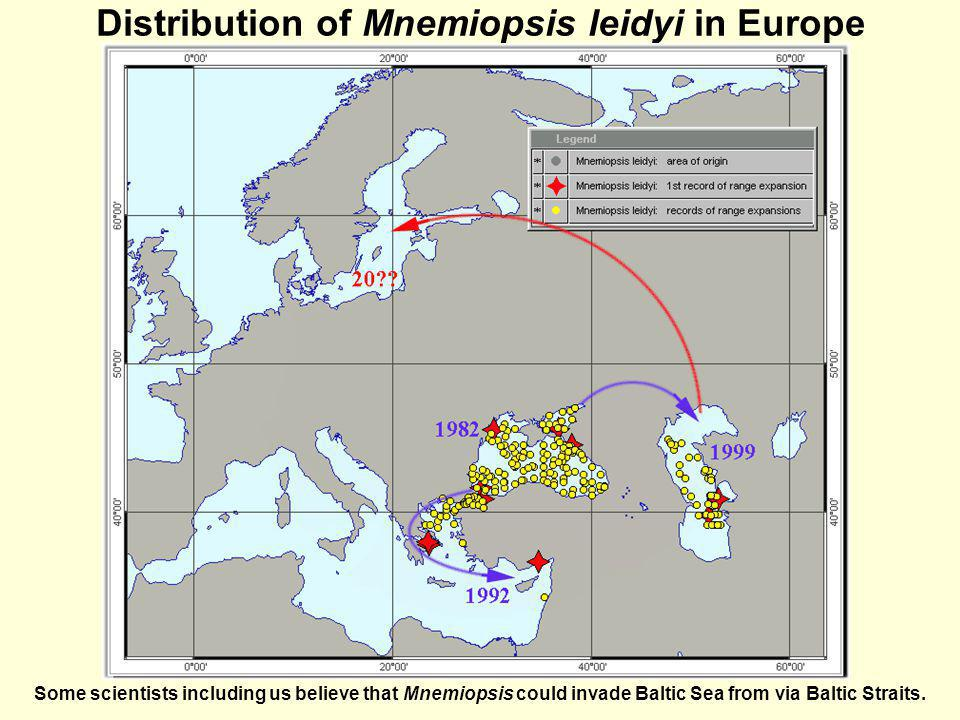 Distribution of Mnemiopsis leidyi in Europe