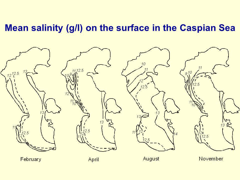 Mean salinity (g/l) on the surface in the Caspian Sea