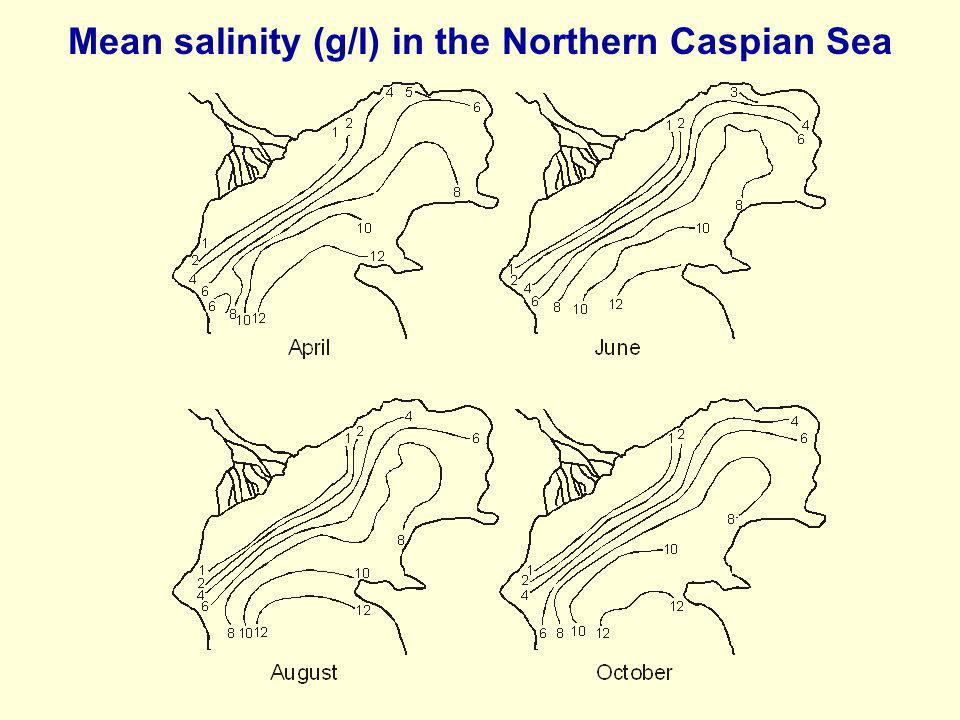 Mean salinity (g/l) in the Northern Caspian Sea