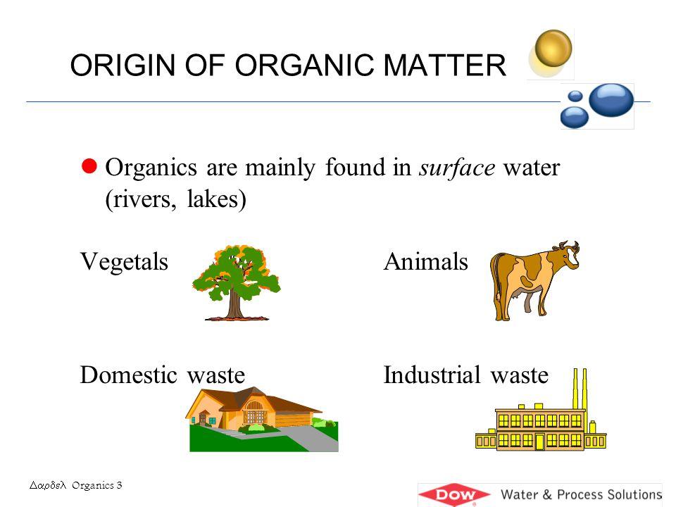 ORIGIN OF ORGANIC MATTER