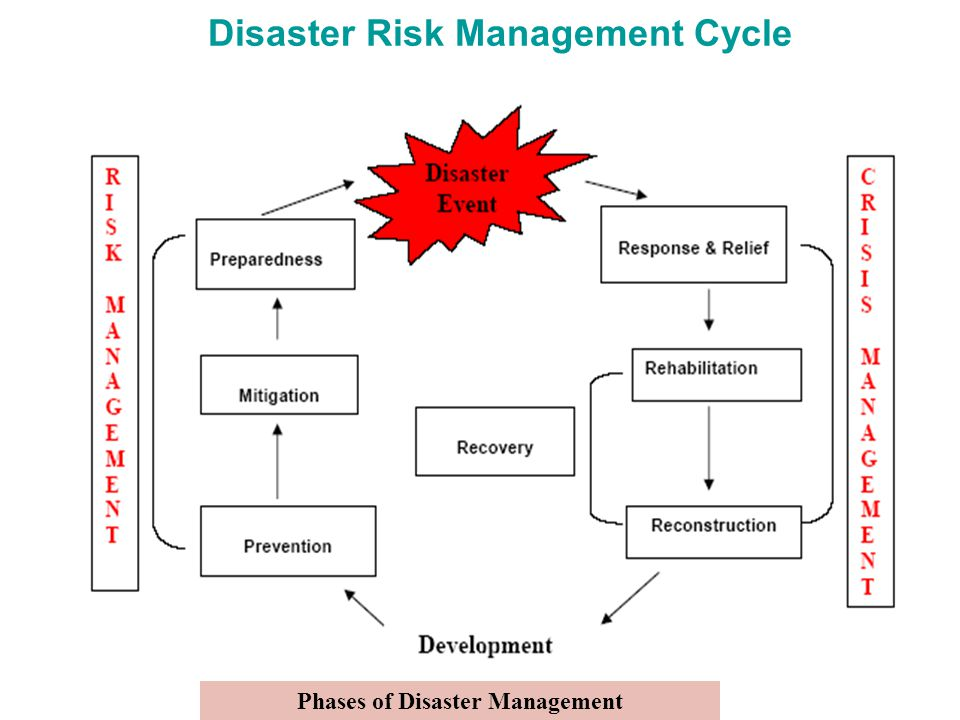 Disaster Risk Management Cycle Phases of Disaster Management