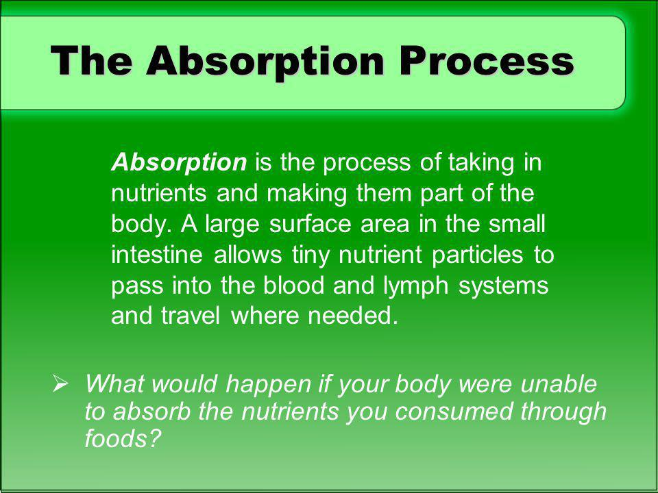 The Absorption Process