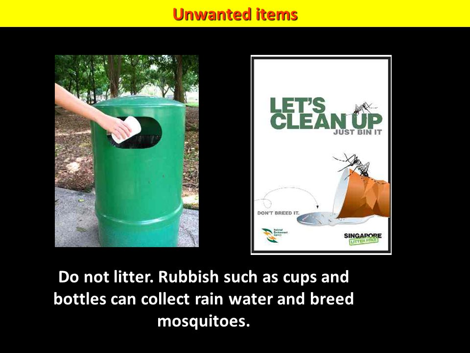 Unwanted items Do not litter. Rubbish such as cups ad bottles can collect rain water and breed mosquitoes.
