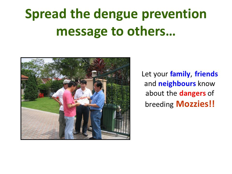 Spread the dengue prevention message to others…