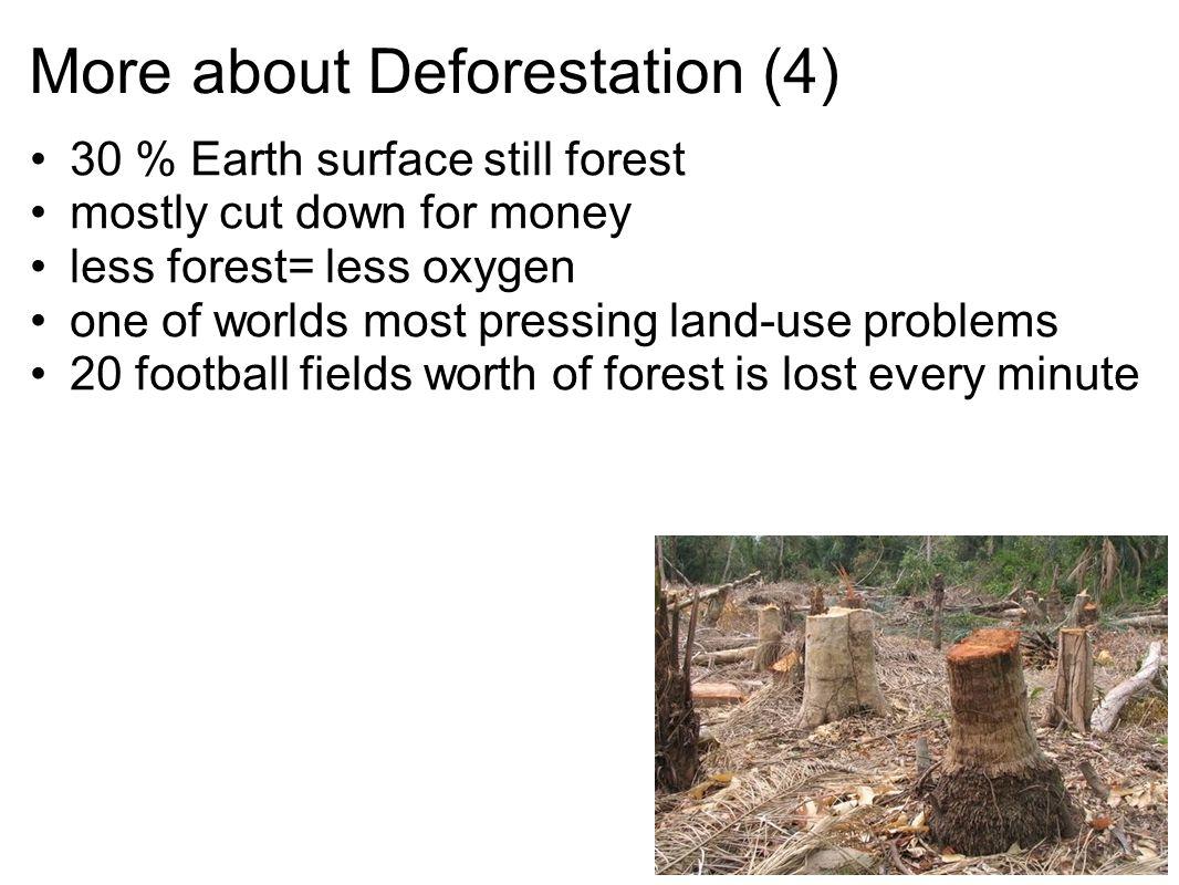 More about Deforestation (4)