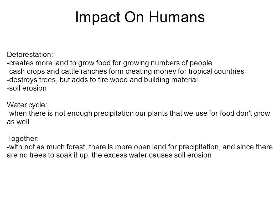 Impact On Humans Deforestation: