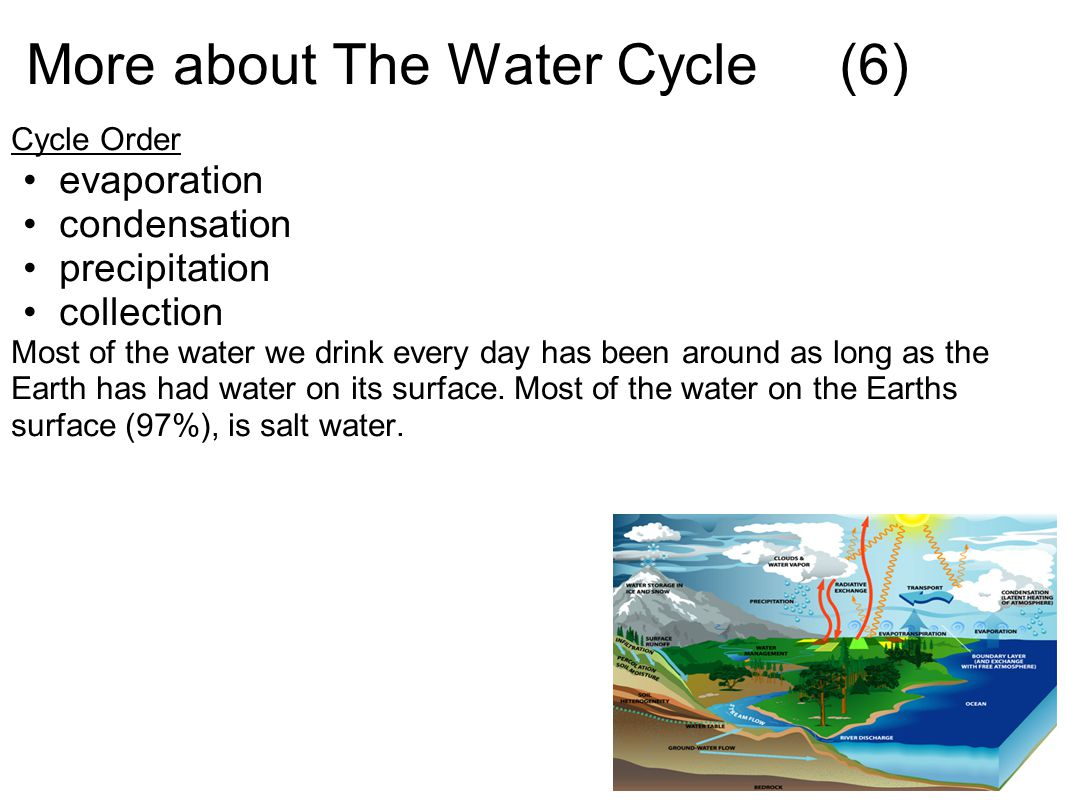 More about The Water Cycle (6)