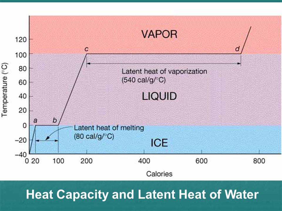 Heat Capacity and Latent Heat of Water
