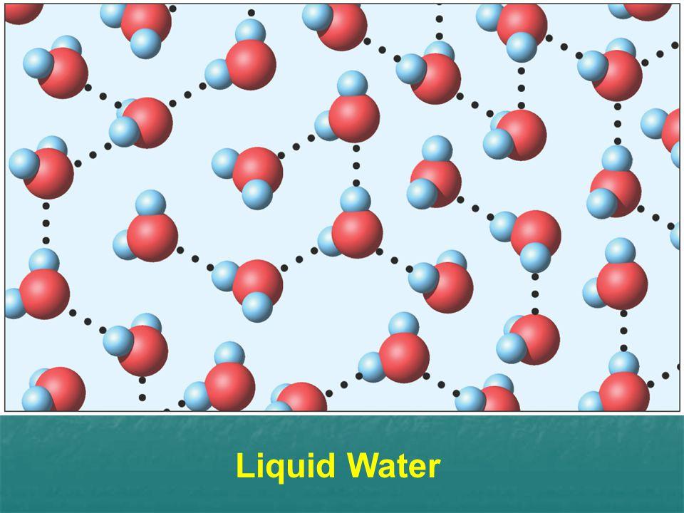 Liquid Water