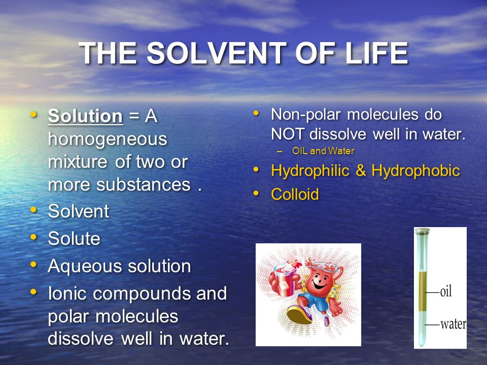 THE SOLVENT OF LIFE Solution = A homogeneous mixture of two or more substances . Solvent. Solute.