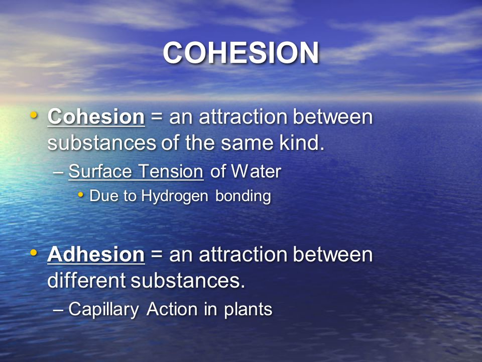COHESION Cohesion = an attraction between substances of the same kind.