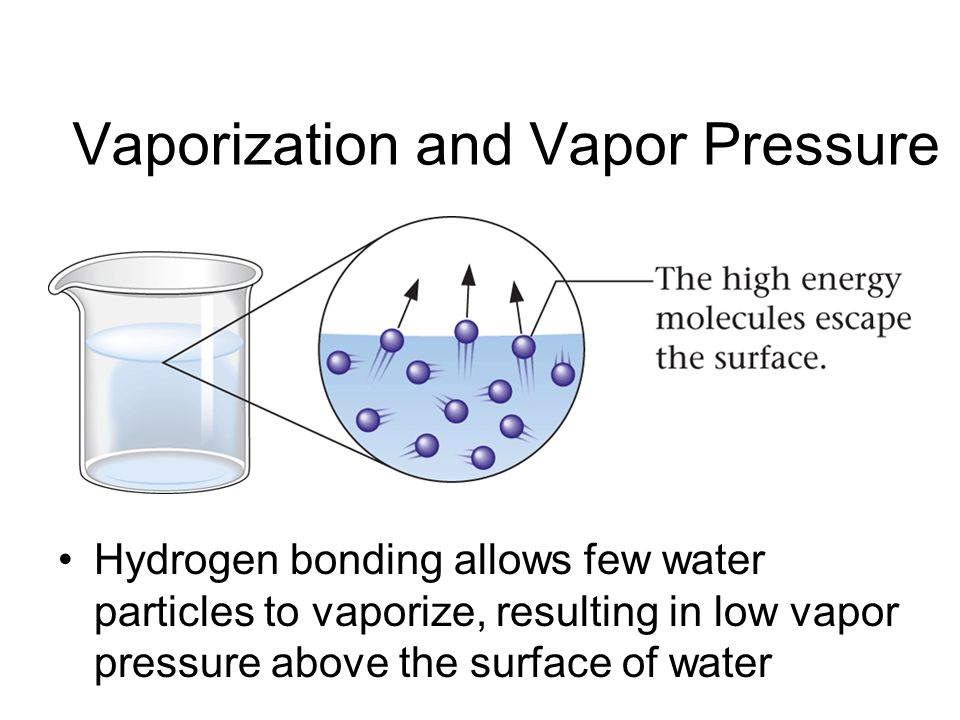 Vaporization and Vapor Pressure