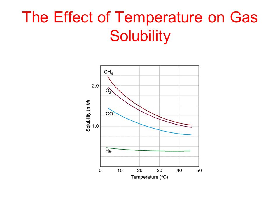 The Effect of Temperature on Gas Solubility