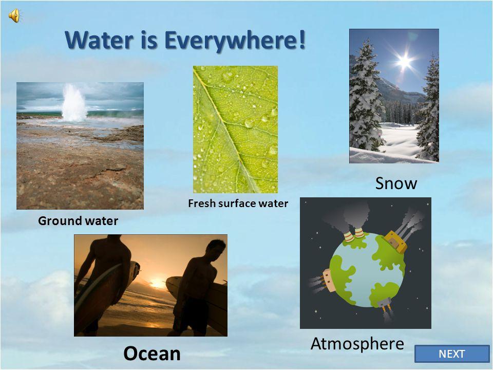 Water is Everywhere! Ocean Snow Atmosphere Ground water