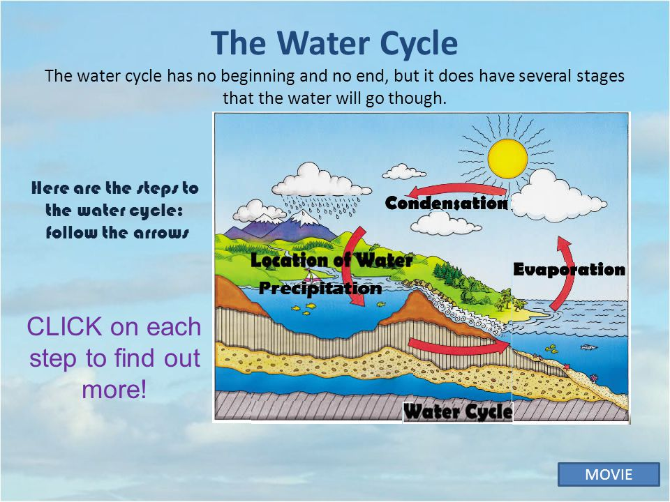 The Water Cycle The water cycle has no beginning and no end, but it does have several stages that the water will go though.