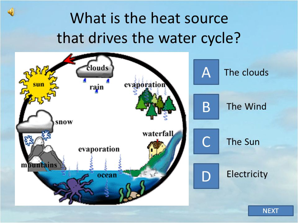 What is the heat source that drives the water cycle
