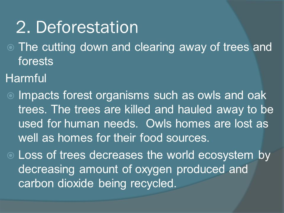 2. Deforestation The cutting down and clearing away of trees and forests. Harmful.