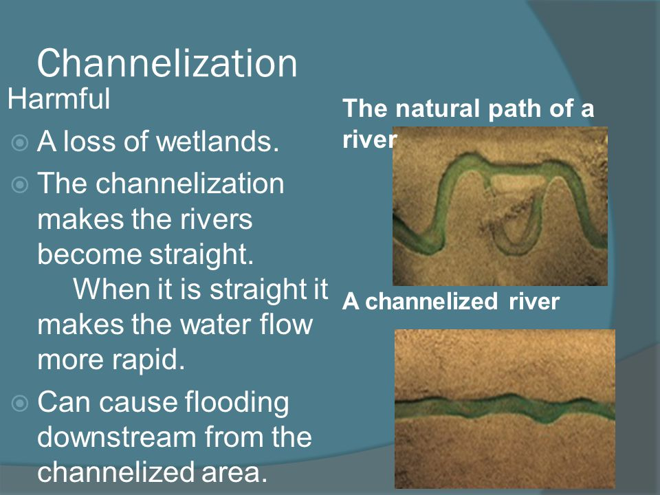 Channelization Harmful A loss of wetlands.