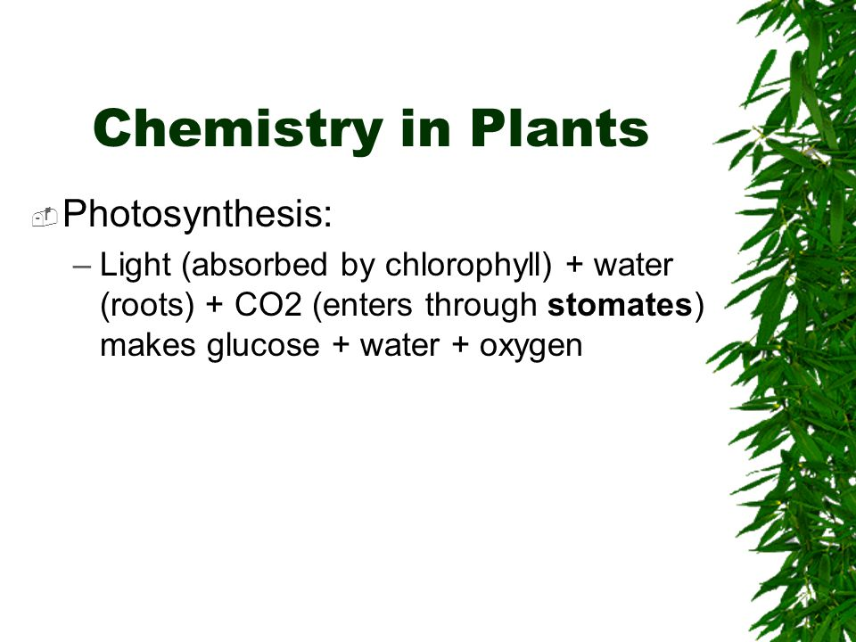 Chemistry in Plants Photosynthesis: