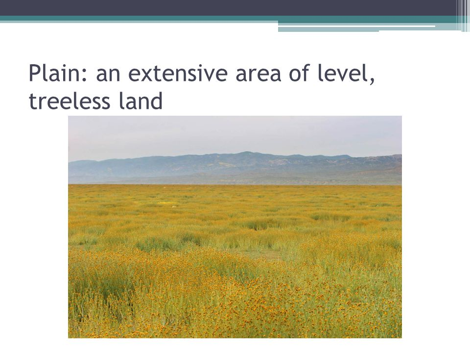 Plain: an extensive area of level, treeless land