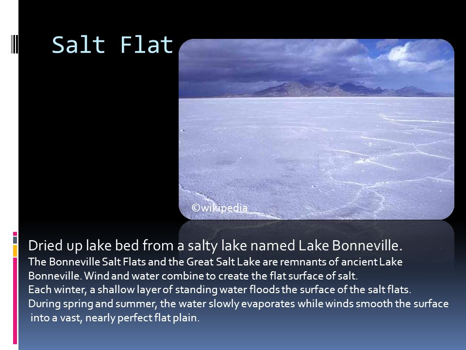 Salt Flat Dried up lake bed from a salty lake named Lake Bonneville.