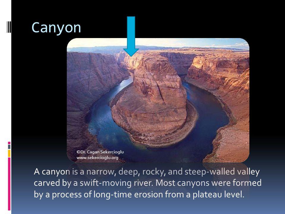 Canyon ©Dr. Cagan Sekercioglu. www.sekercioglu.org.