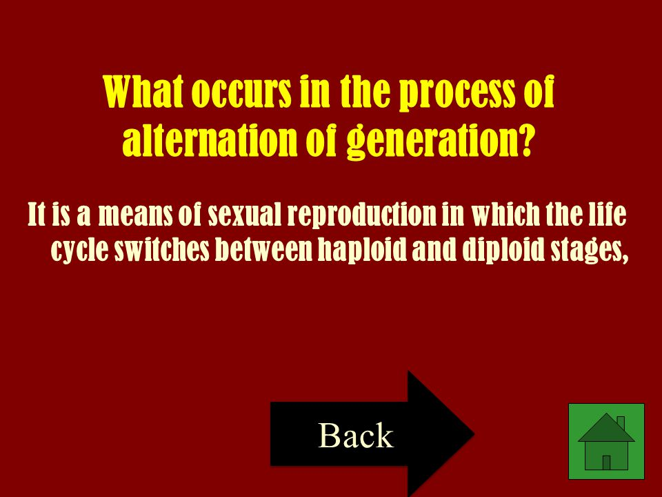 What occurs in the process of alternation of generation