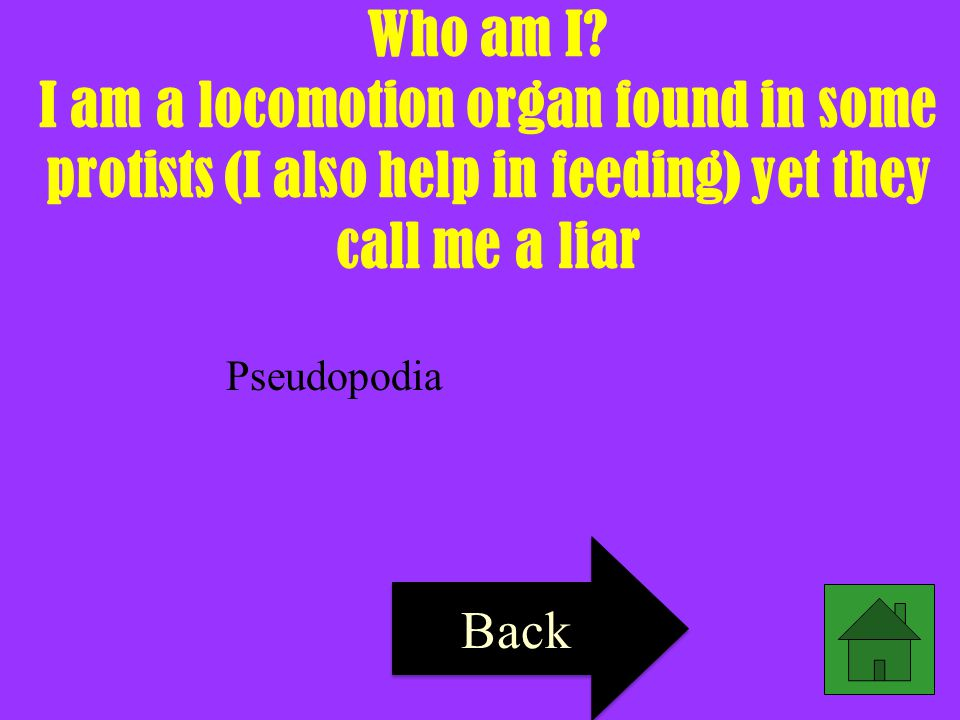 Who am I I am a locomotion organ found in some protists (I also help in feeding) yet they call me a liar