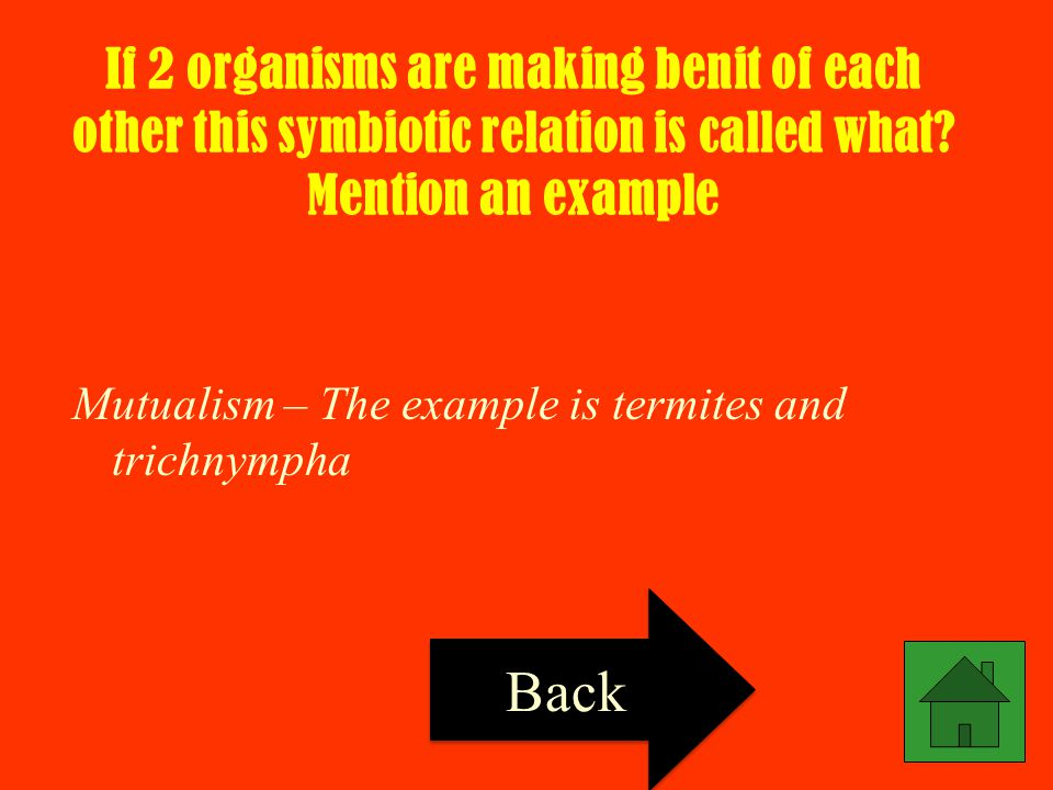If 2 organisms are making benit of each other this symbiotic relation is called what Mention an example