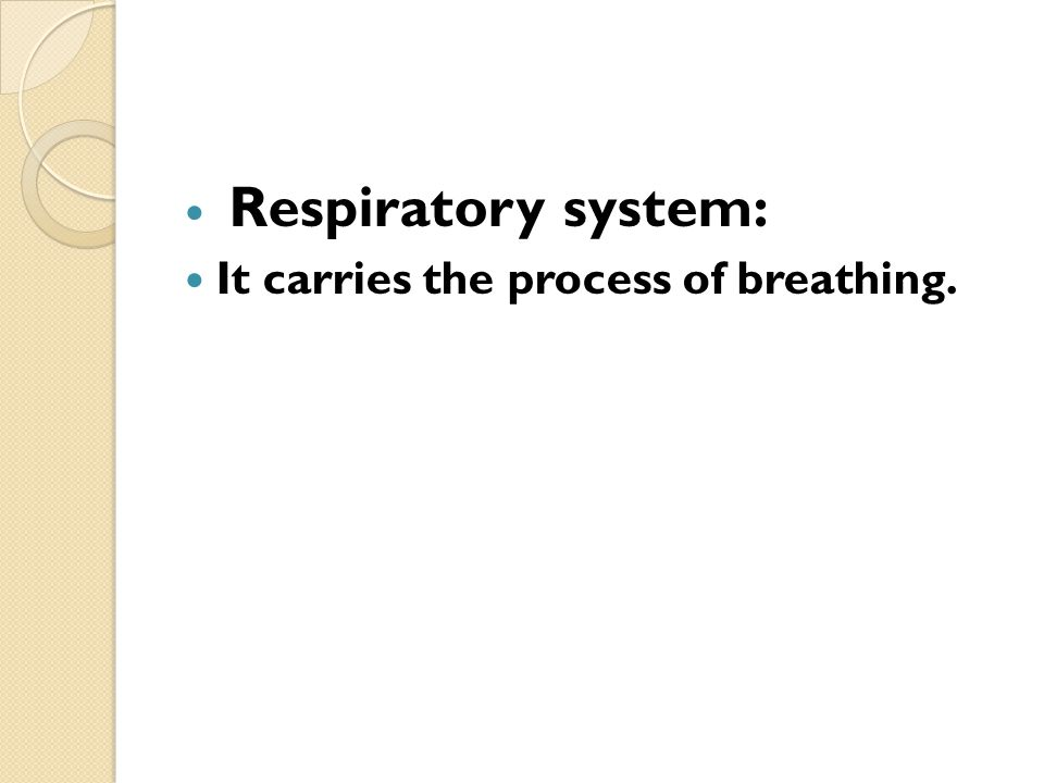 Respiratory system: It carries the process of breathing.
