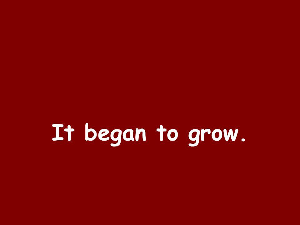 It began to grow.