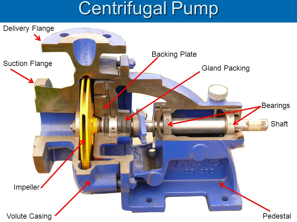 Centrifugal Pump Delivery Flange Backing Plate Suction Flange