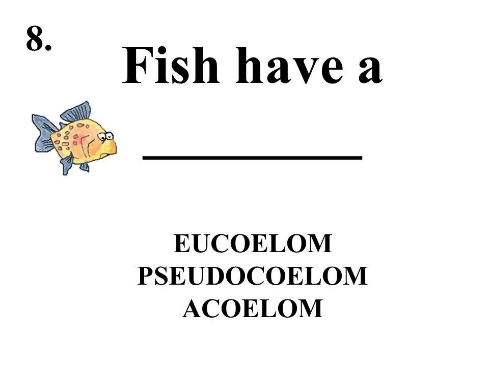 Fish have a ________ EUCOELOM PSEUDOCOELOM ACOELOM