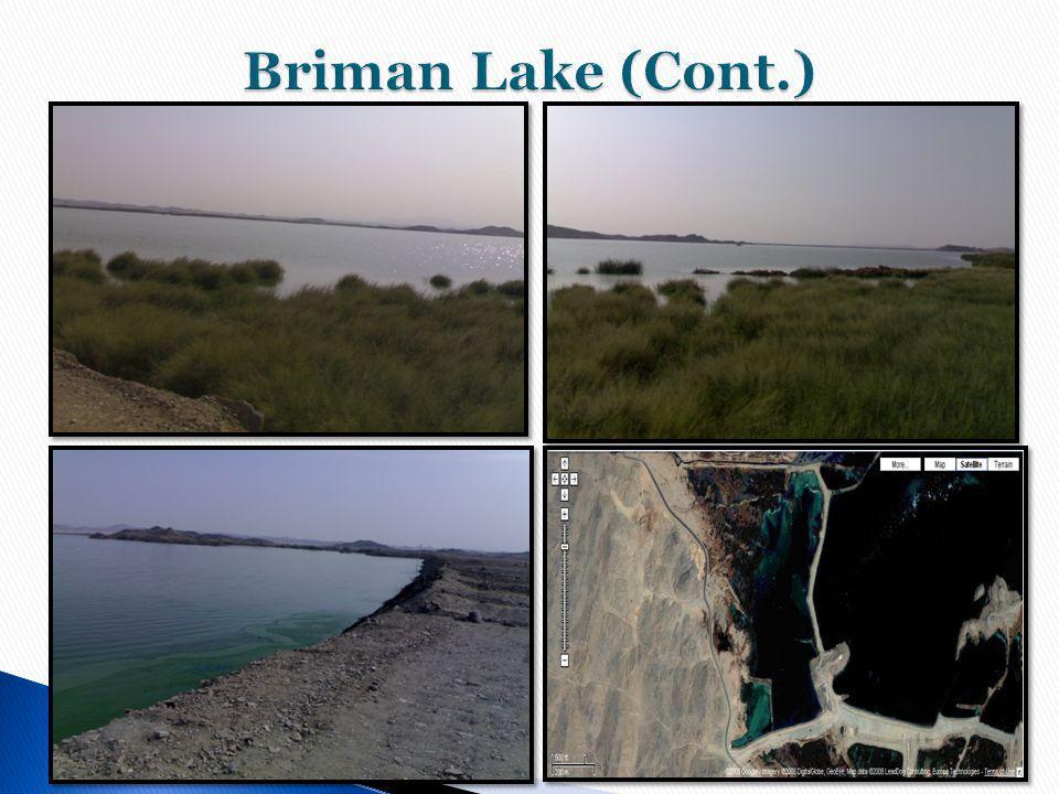 Briman Lake (Cont.)