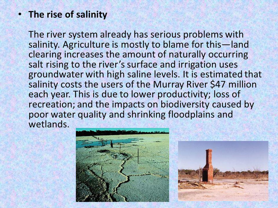 The rise of salinity The river system already has serious problems with salinity.
