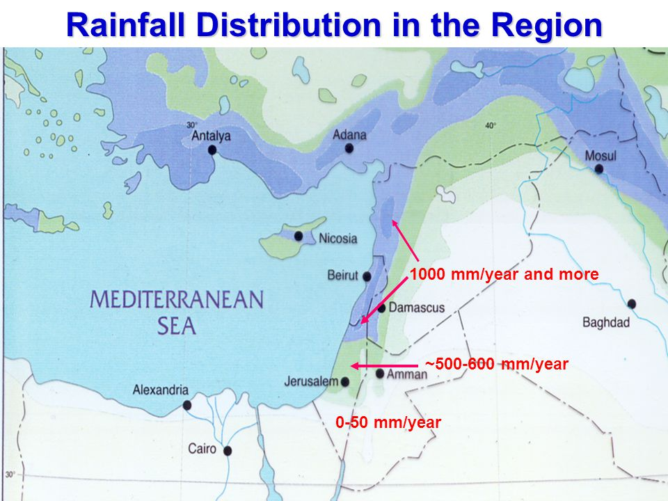 Rainfall Distribution in the Region