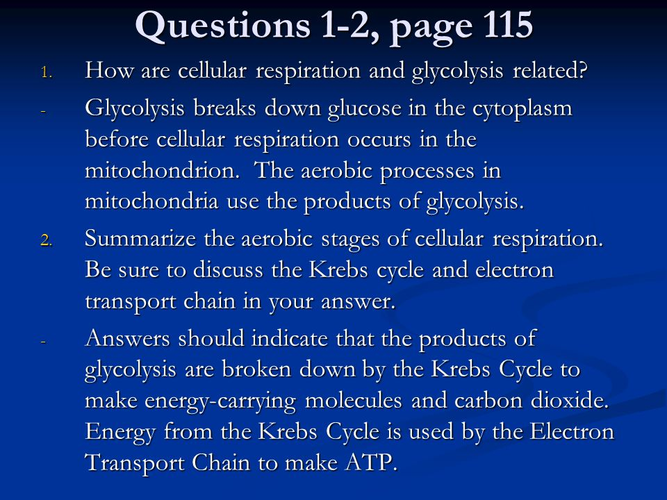Questions 1-2, page 115 How are cellular respiration and glycolysis related
