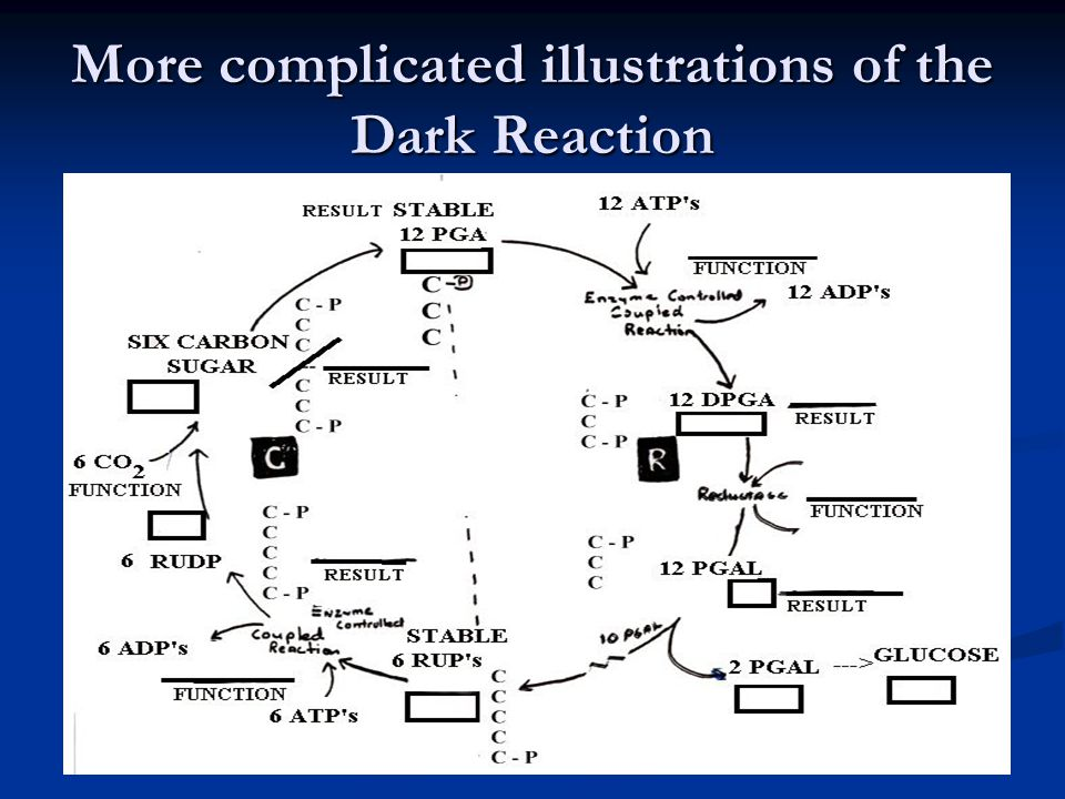 More complicated illustrations of the Dark Reaction