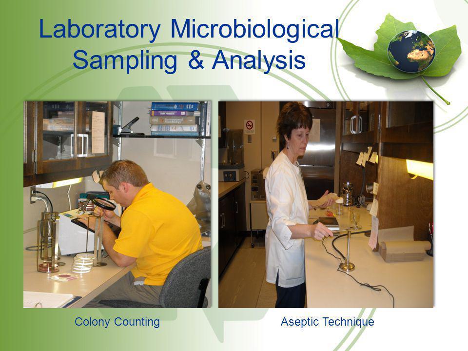 Laboratory Microbiological Sampling & Analysis