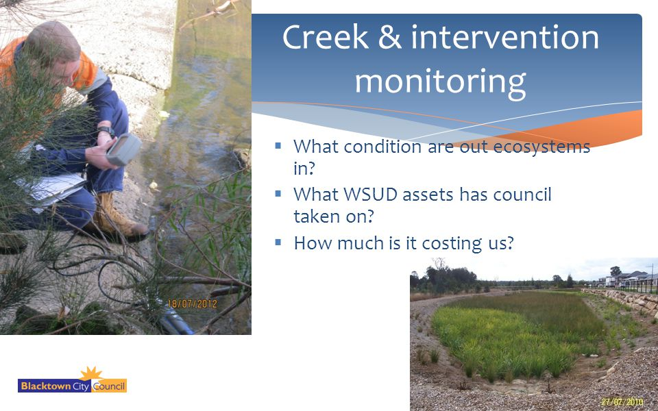 Creek & intervention monitoring
