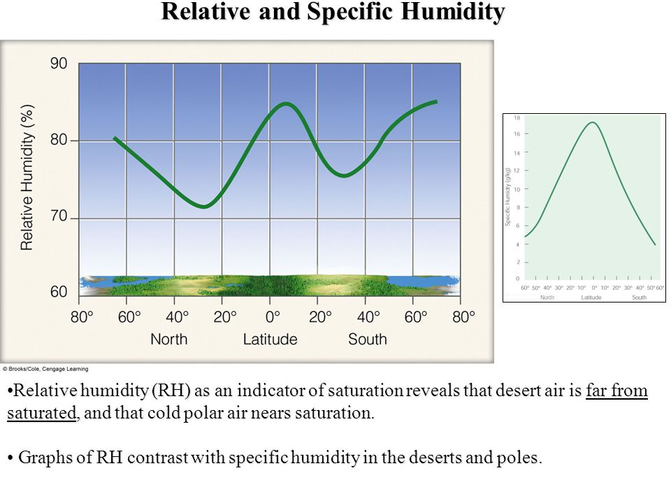 Relative and Specific Humidity