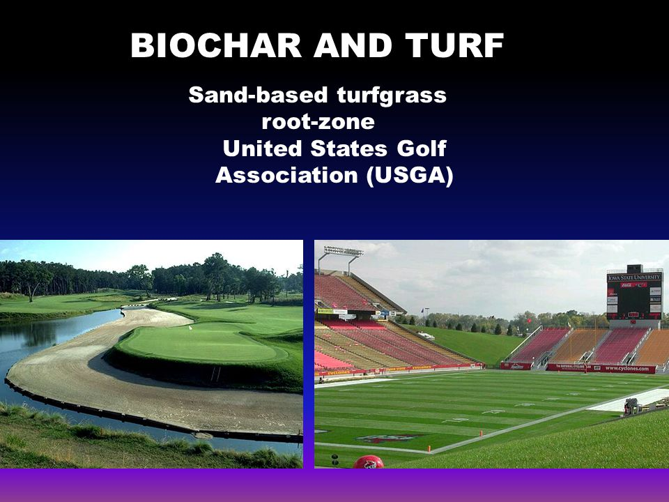 BIOCHAR AND TURF turf Sand-based turfgrass root-zone